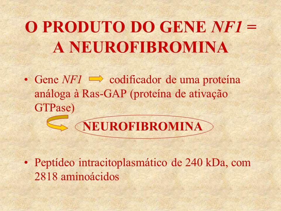 O PRODUTO DO GENE NF1 = A NEUROFIBROMINA
