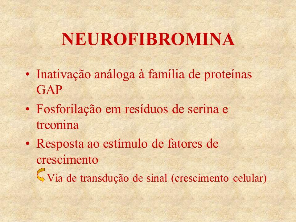 NEUROFIBROMINA Inativação análoga à família de proteínas GAP