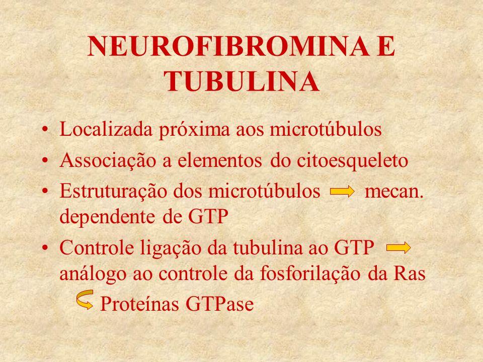 NEUROFIBROMINA E TUBULINA