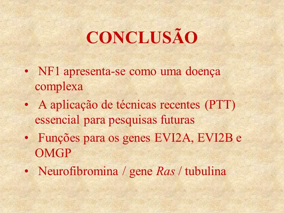 CONCLUSÃO NF1 apresenta-se como uma doença complexa