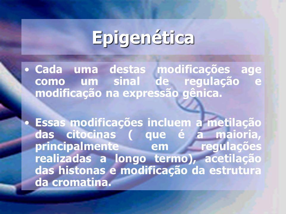 Epigenética Cada uma destas modificações age como um sinal de regulação e modificação na expressão gênica.