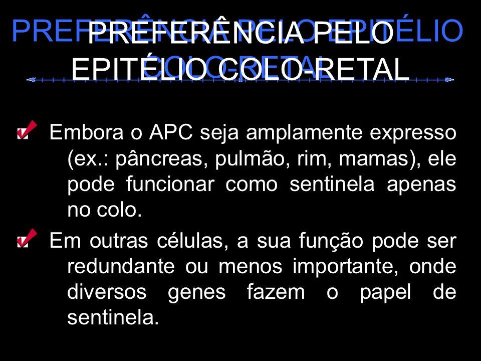 PREFERÊNCIA PELO EPITÉLIO COLO-RETAL