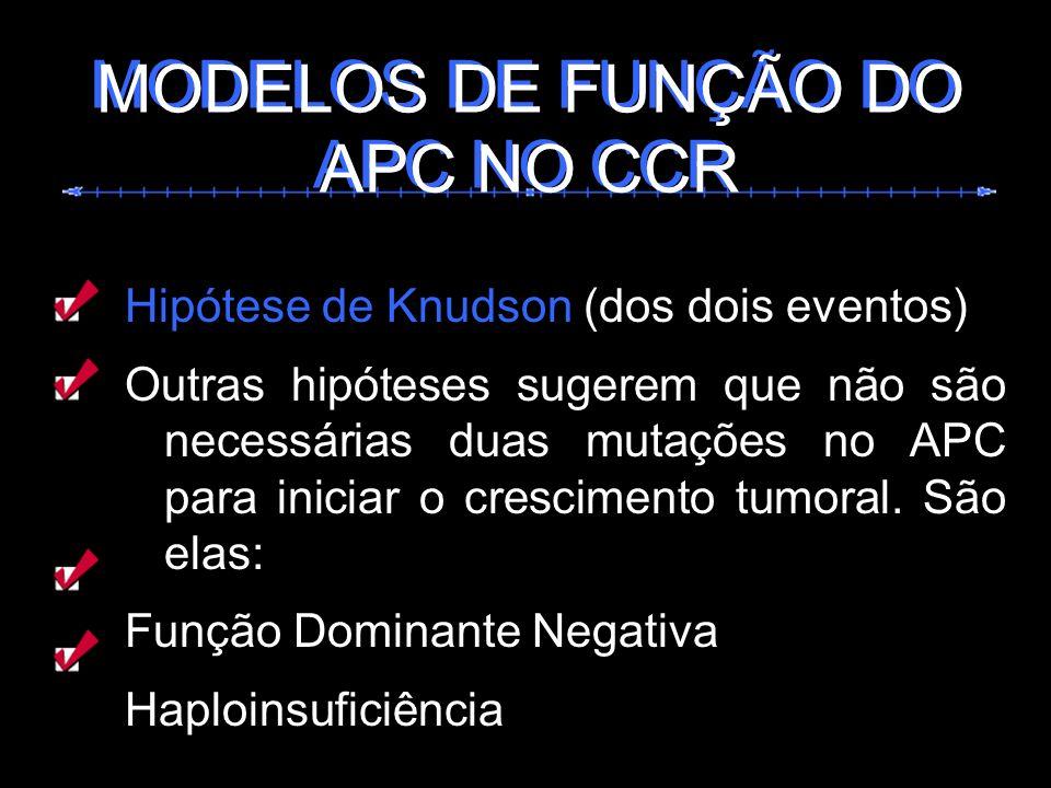 MODELOS DE FUNÇÃO DO APC NO CCR MODELOS DE FUNÇÃO DO APC NO CCR