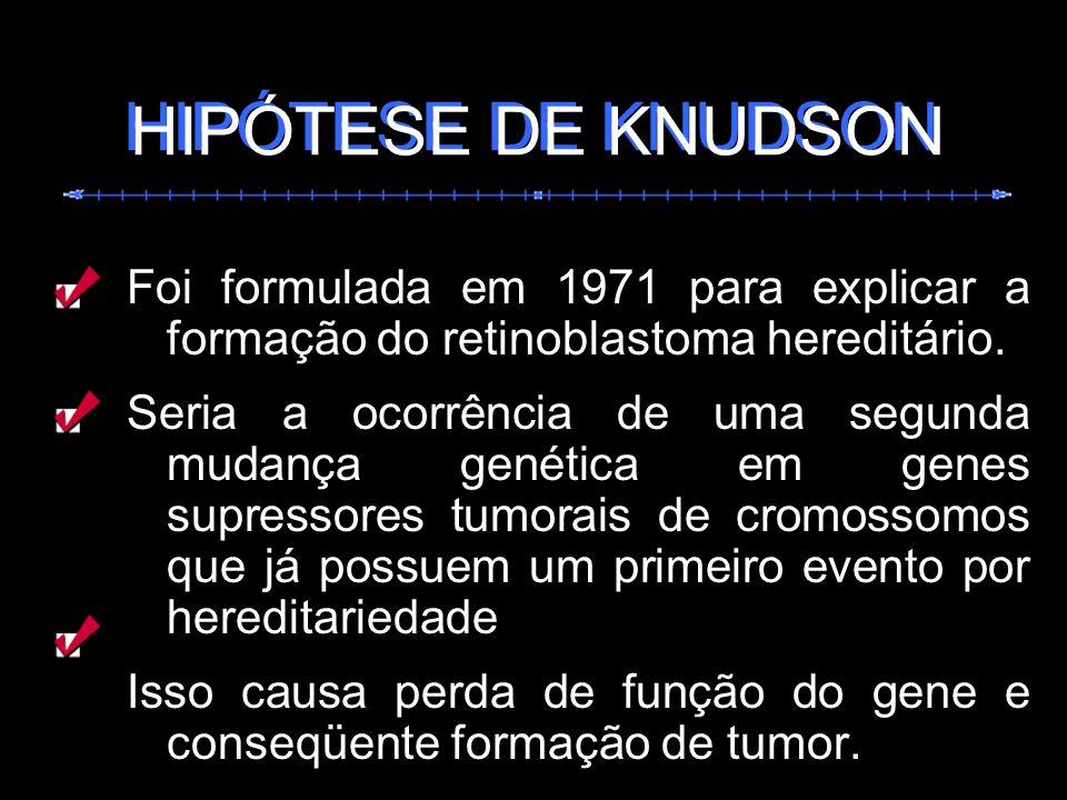HIPÓTESE DE KNUDSON HIPÓTESE DE KNUDSON