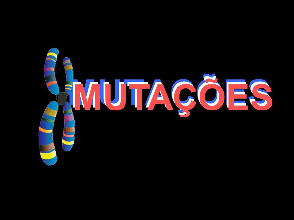 MUTAÇÕES MUTAÇÕES MUTAÇÕES