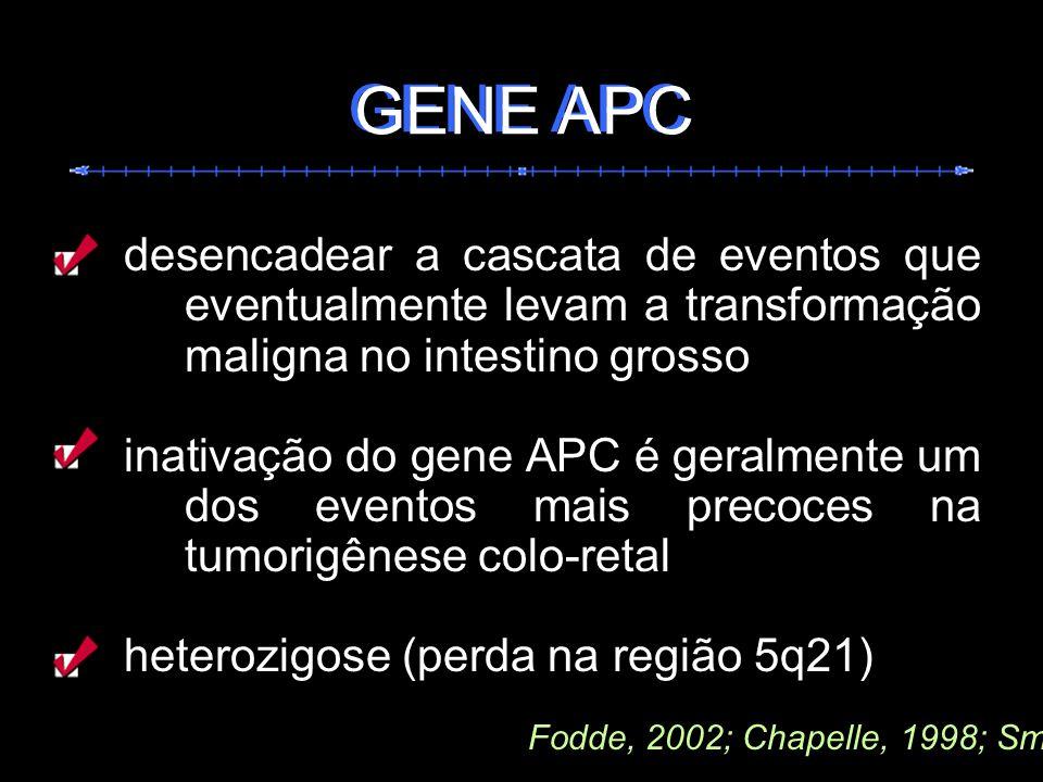 GENE APC GENE APC. desencadear a cascata de eventos que eventualmente levam a transformação maligna no intestino grosso.