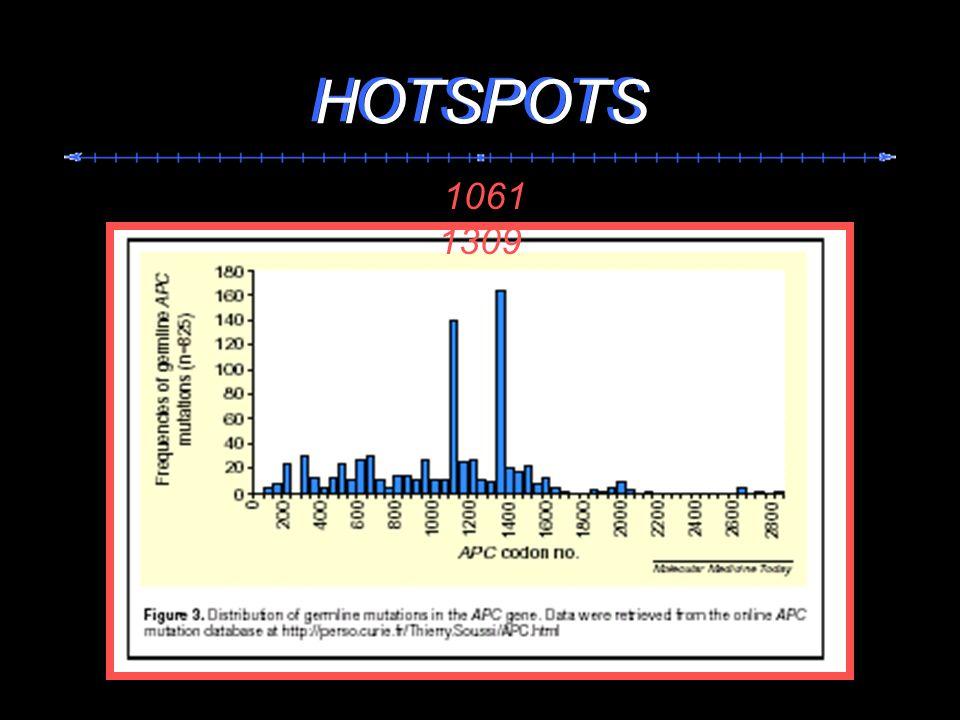HOTSPOTS HOTSPOTS 1061 1309