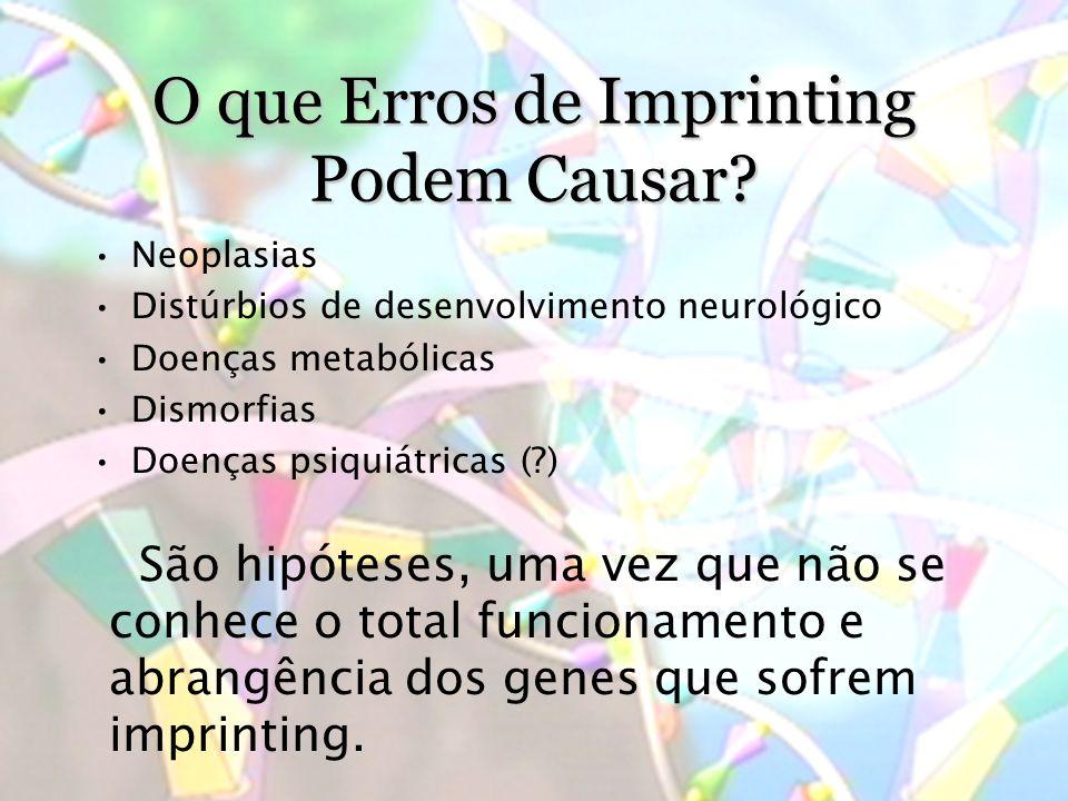 O que Erros de Imprinting Podem Causar