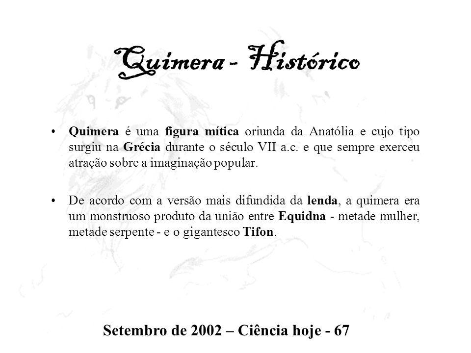Quimera - Histórico Setembro de 2002 – Ciência hoje - 67