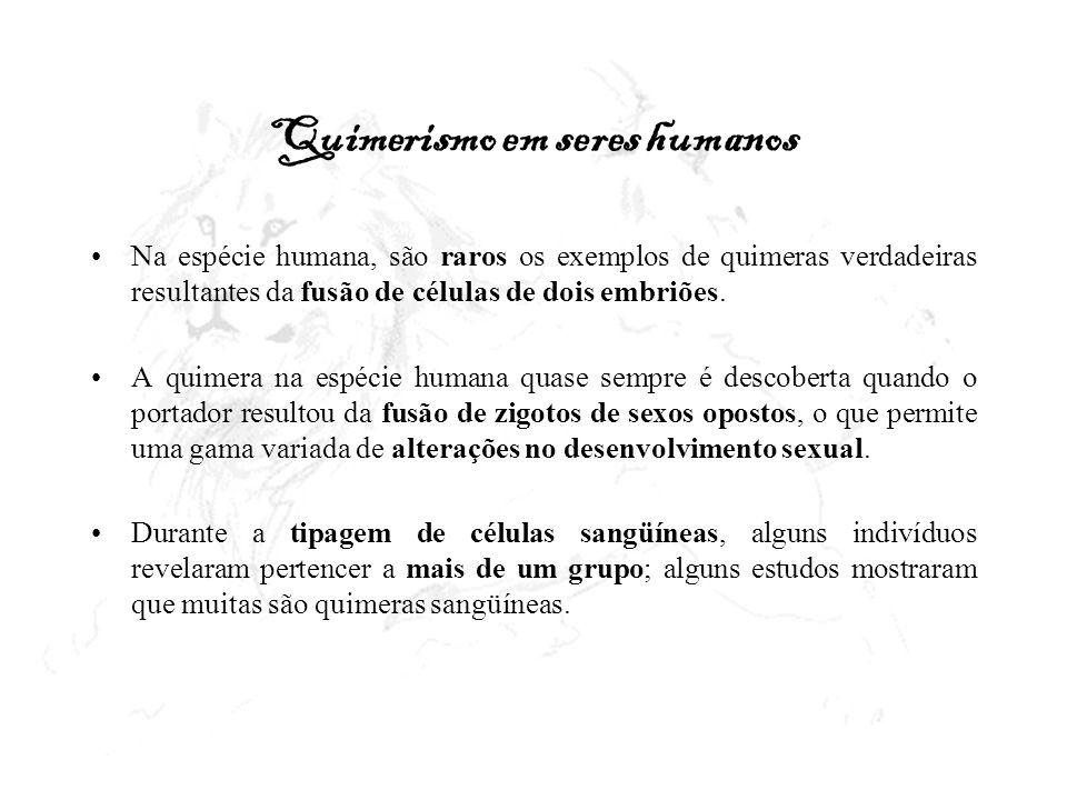 Quimerismo em seres humanos