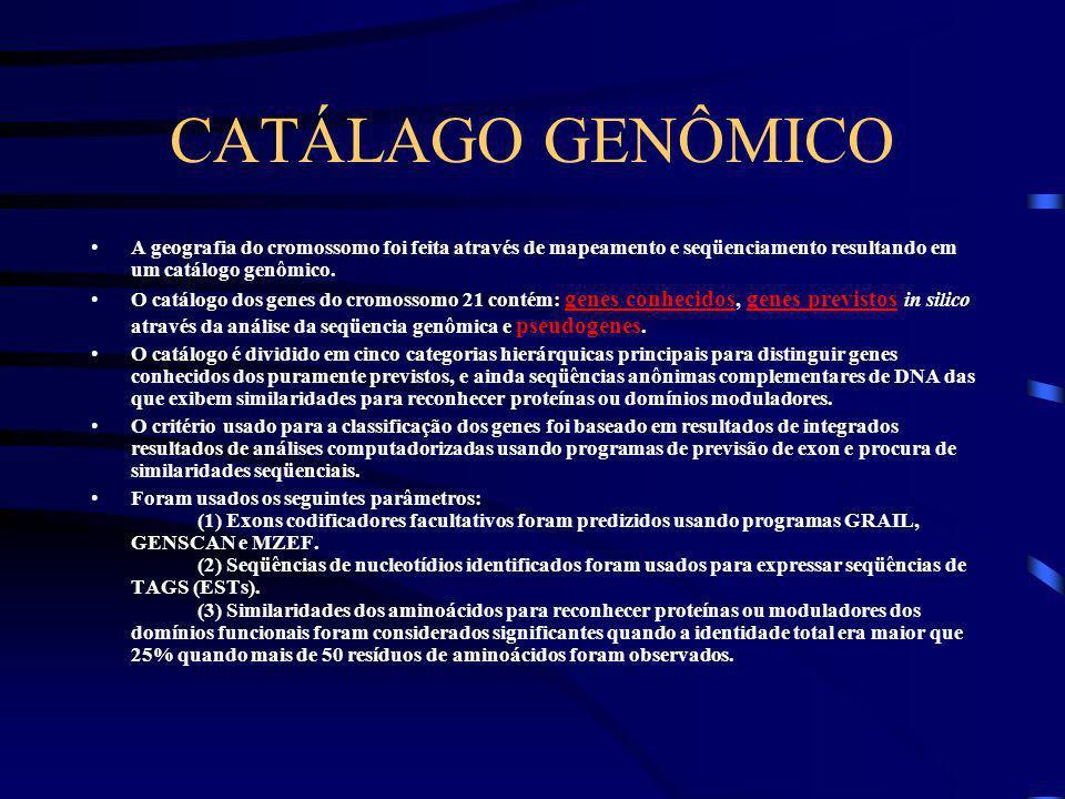 CATÁLAGO GENÔMICO A geografia do cromossomo foi feita através de mapeamento e seqüenciamento resultando em um catálogo genômico.