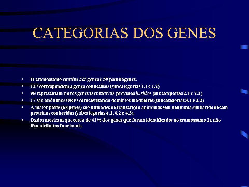 CATEGORIAS DOS GENES O cromossomo contém 225 genes e 59 pseudogenes.