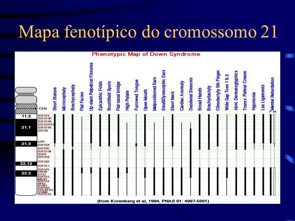 Mapa fenotípico do cromossomo 21