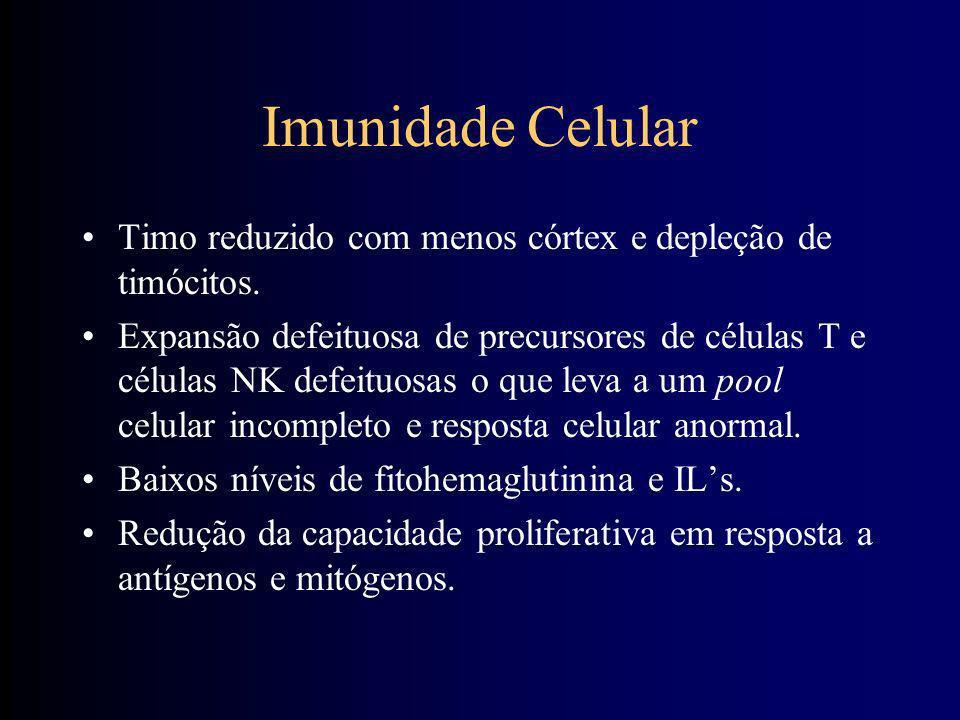 Imunidade Celular Timo reduzido com menos córtex e depleção de timócitos.
