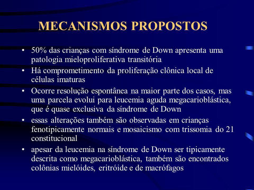 MECANISMOS PROPOSTOS 50% das crianças com síndrome de Down apresenta uma patologia mieloproliferativa transitória.
