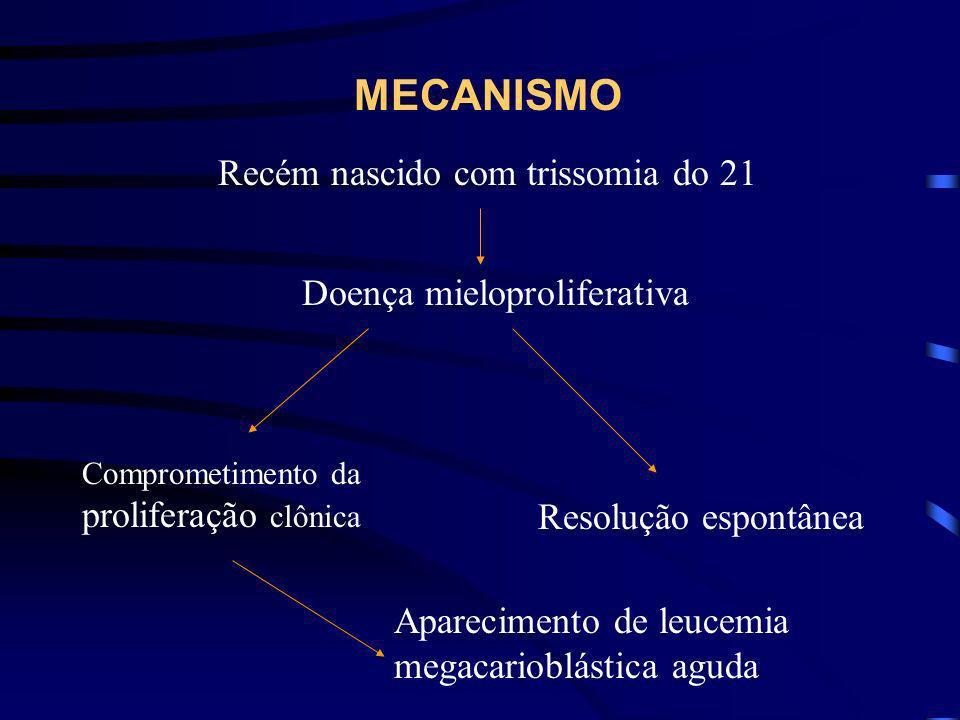 MECANISMO Recém nascido com trissomia do 21 Doença mieloproliferativa