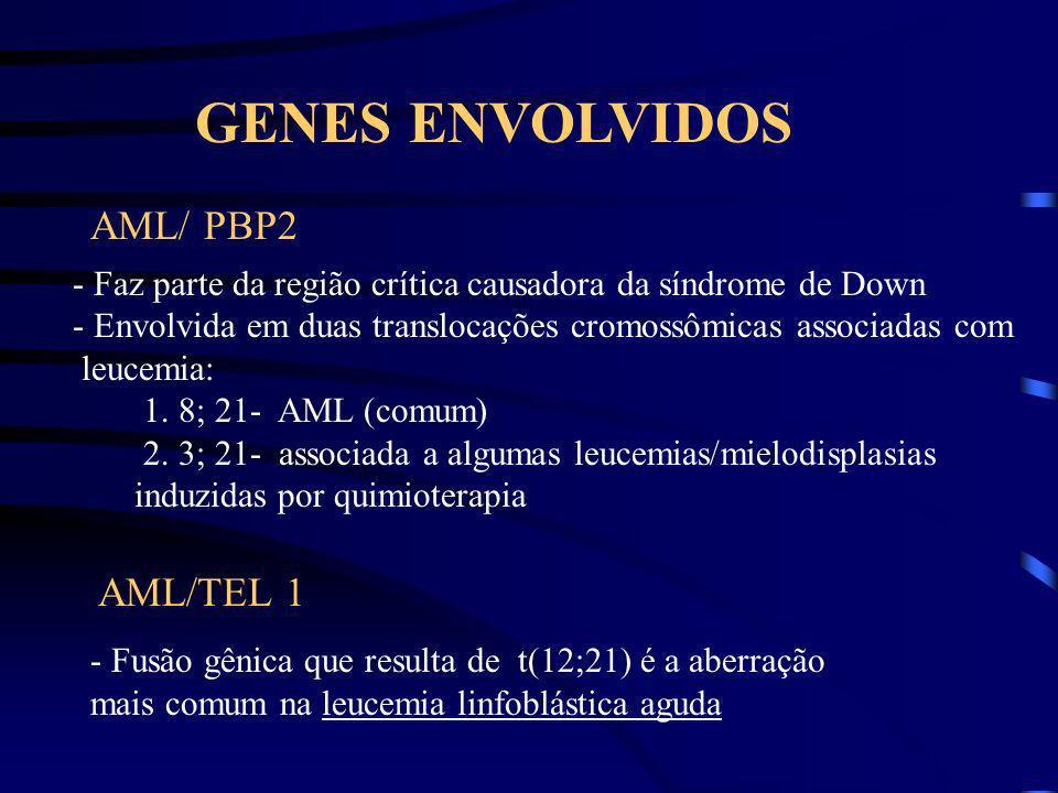 GENES ENVOLVIDOS AML/ PBP2 AML/TEL 1