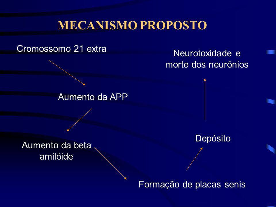 MECANISMO PROPOSTO Cromossomo 21 extra