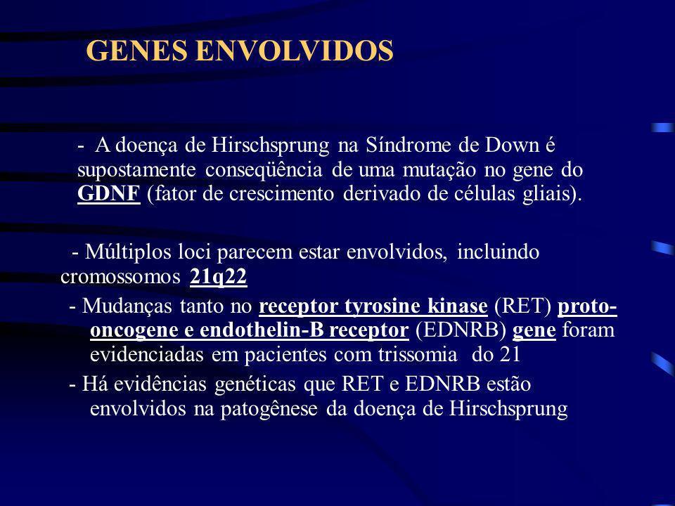 GENES ENVOLVIDOS