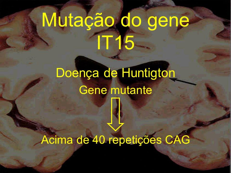 Doença de Huntigton Gene mutante Acima de 40 repetições CAG