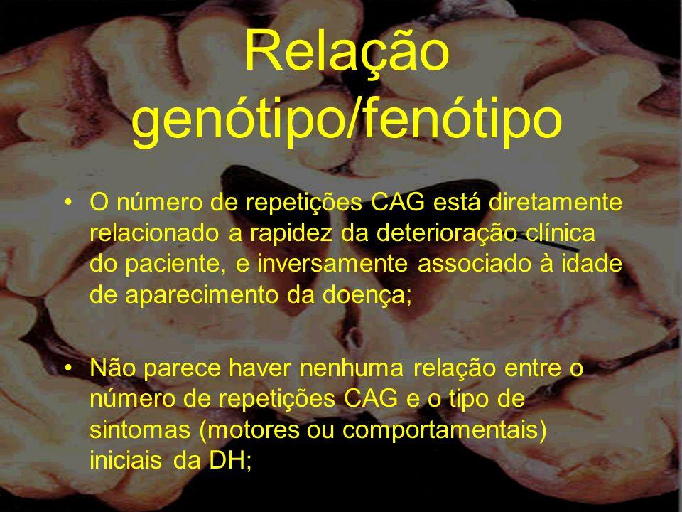 Relação genótipo/fenótipo