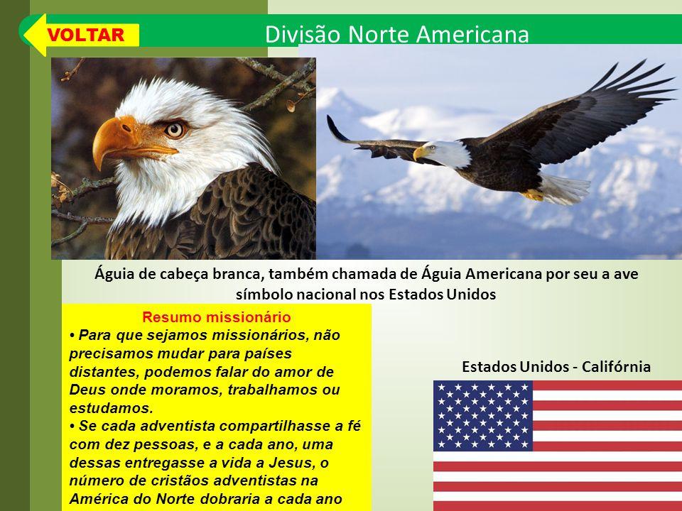símbolo nacional nos Estados Unidos Estados Unidos - Califórnia