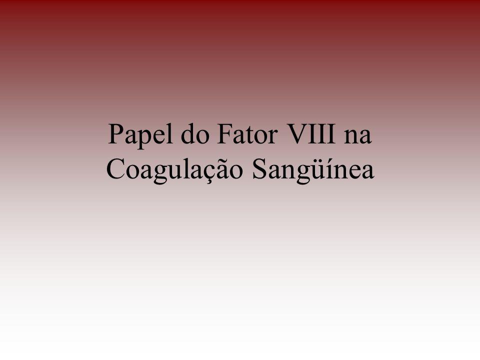 Papel do Fator VIII na Coagulação Sangüínea