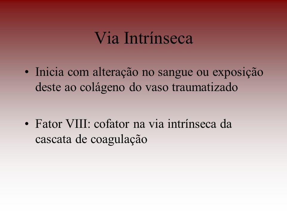 Via Intrínseca Inicia com alteração no sangue ou exposição deste ao colágeno do vaso traumatizado.