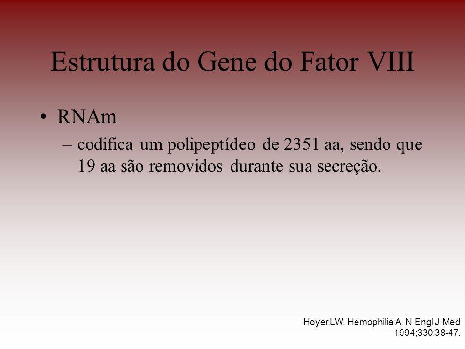 Estrutura do Gene do Fator VIII