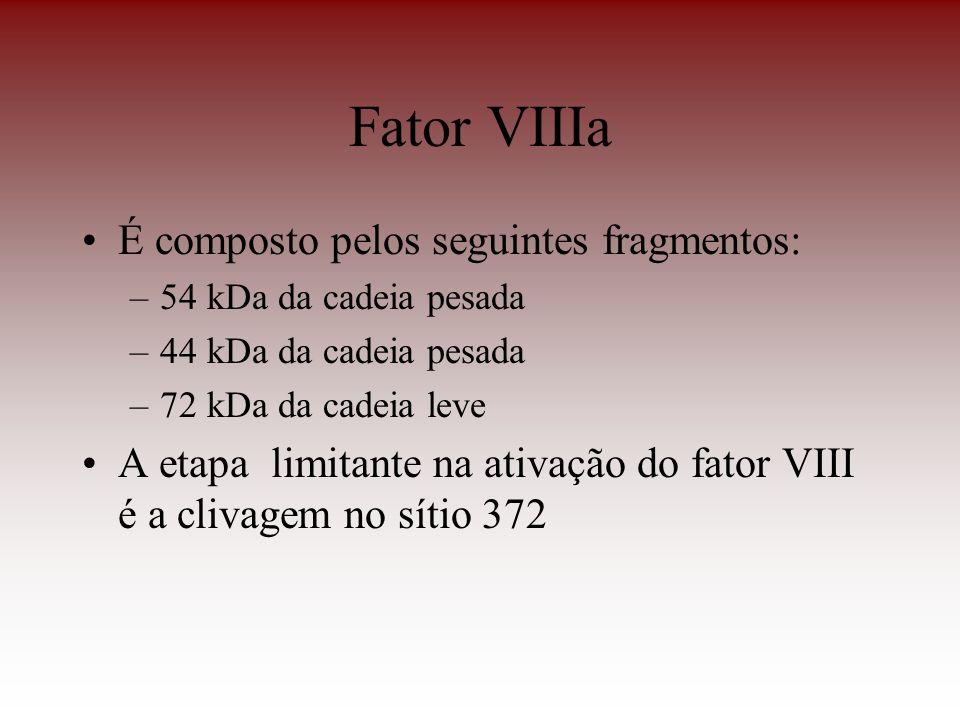 Fator VIIIa É composto pelos seguintes fragmentos:
