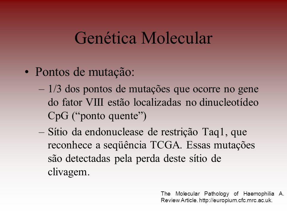 Genética Molecular Pontos de mutação: