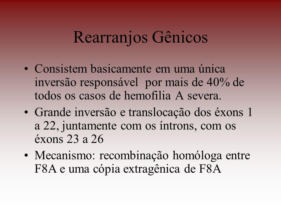 Rearranjos GênicosConsistem basicamente em uma única inversão responsável por mais de 40% de todos os casos de hemofilia A severa.