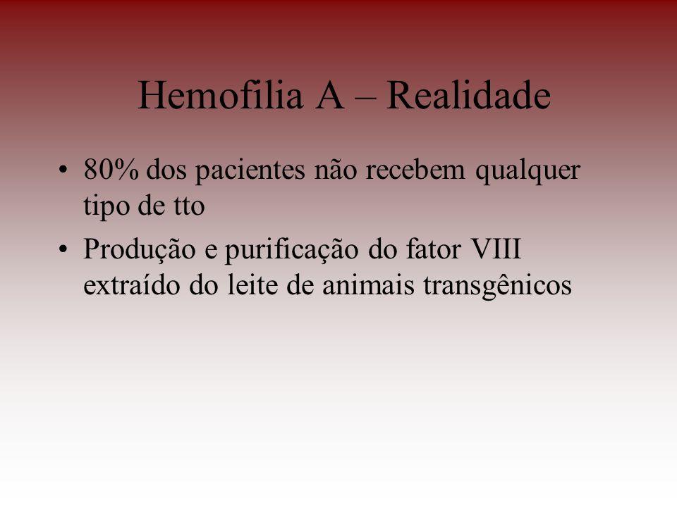 Hemofilia A – Realidade