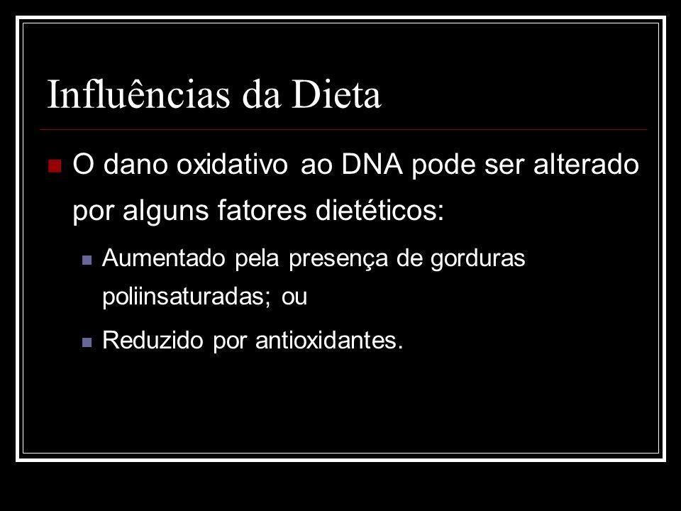 Influências da DietaO dano oxidativo ao DNA pode ser alterado por alguns fatores dietéticos: Aumentado pela presença de gorduras poliinsaturadas; ou.