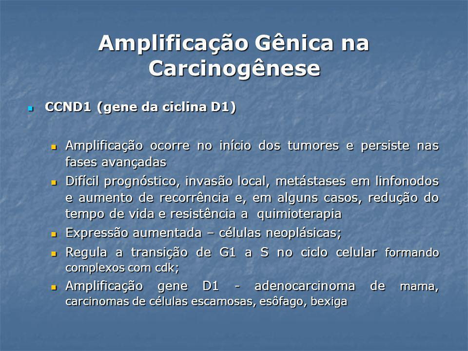 Amplificação Gênica na Carcinogênese