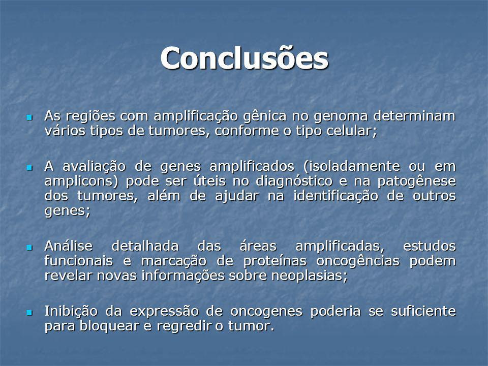 Conclusões As regiões com amplificação gênica no genoma determinam vários tipos de tumores, conforme o tipo celular;