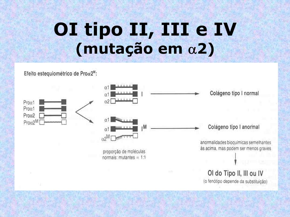 OI tipo II, III e IV (mutação em 2)