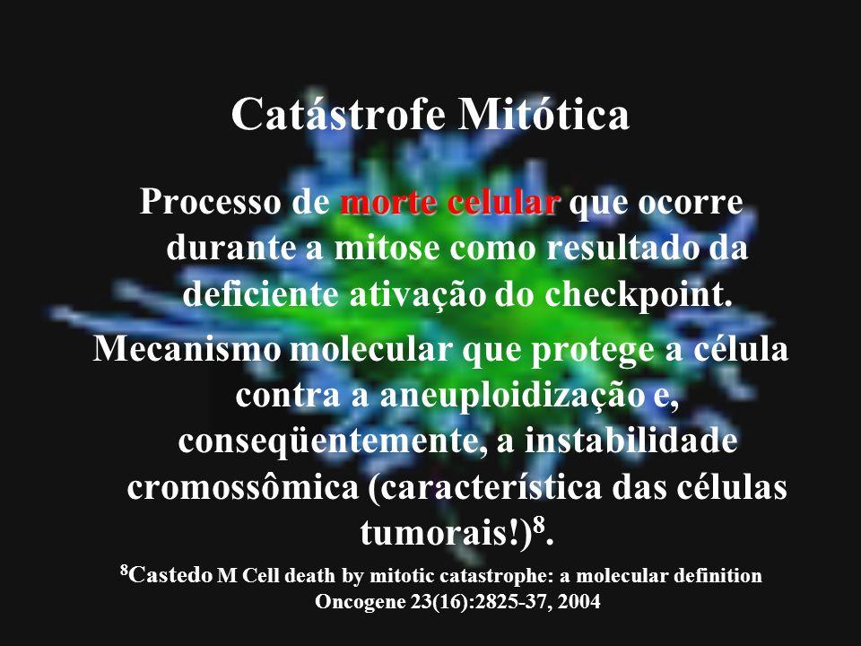 Catástrofe Mitótica Processo de morte celular que ocorre durante a mitose como resultado da deficiente ativação do checkpoint.