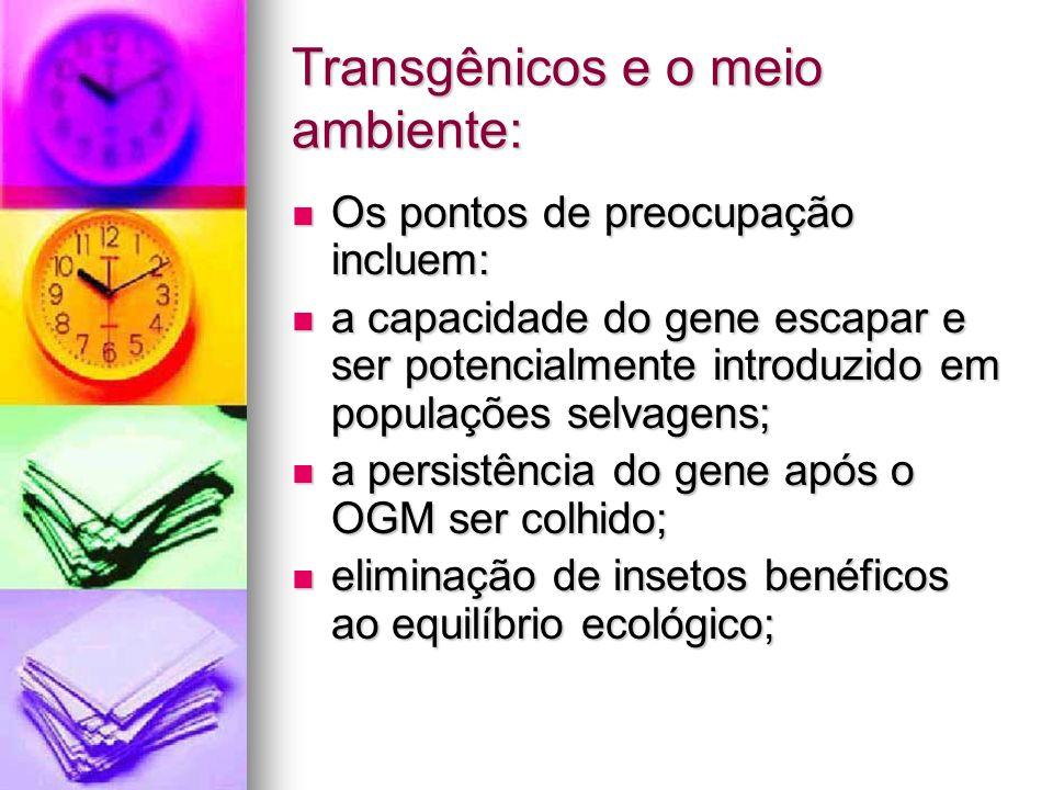 Transgênicos e o meio ambiente: