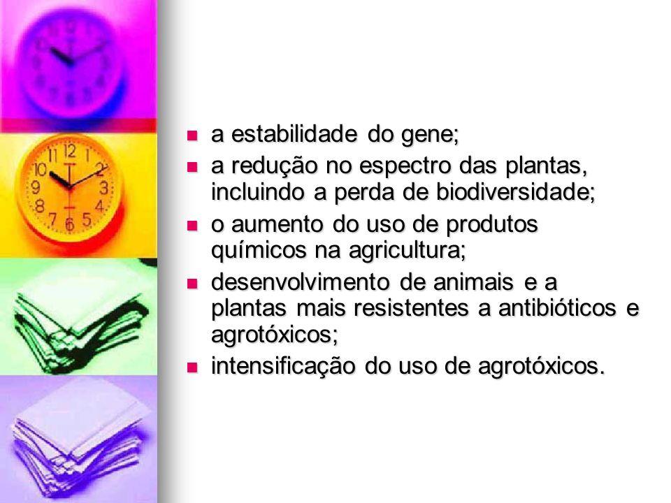 a estabilidade do gene;
