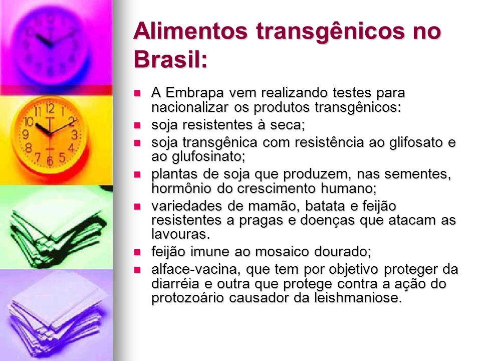 Alimentos transgênicos no Brasil: