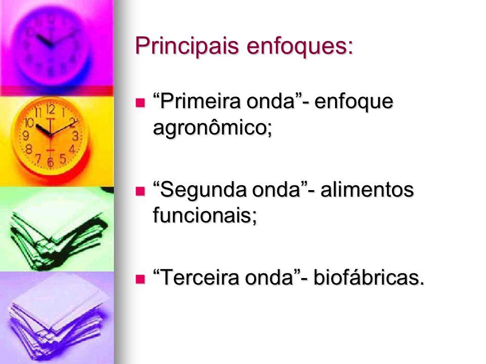 Principais enfoques: Primeira onda - enfoque agronômico;