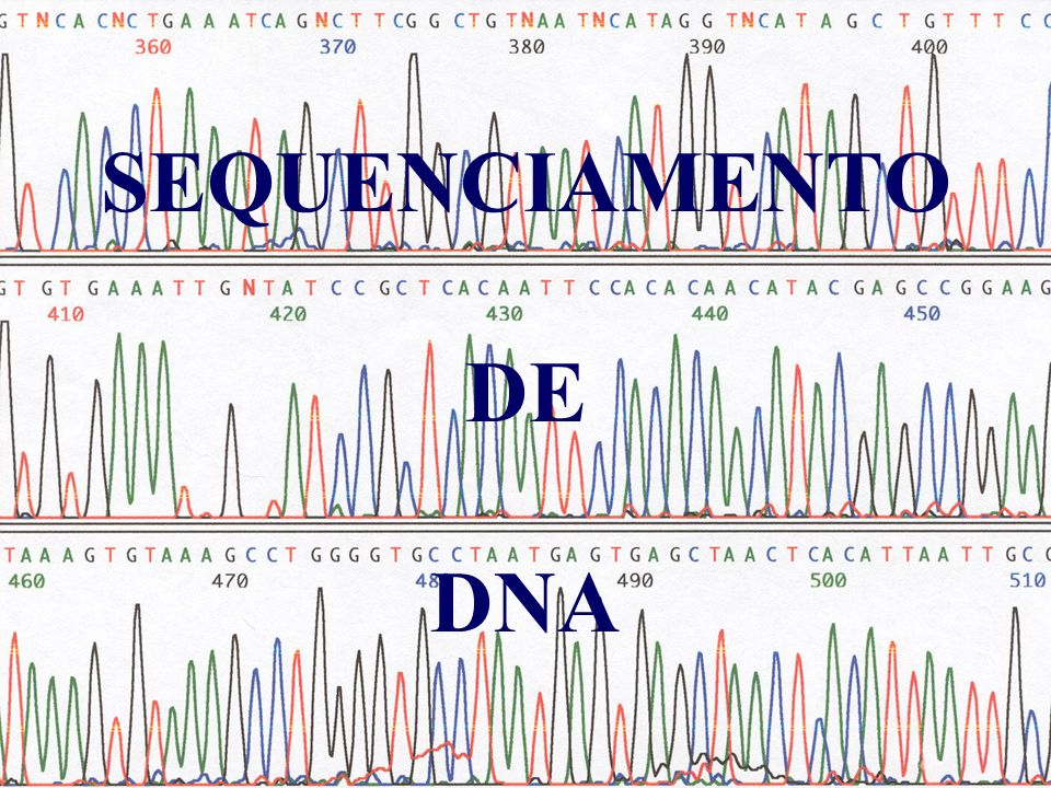SEQUENCIAMENTO DE DNA