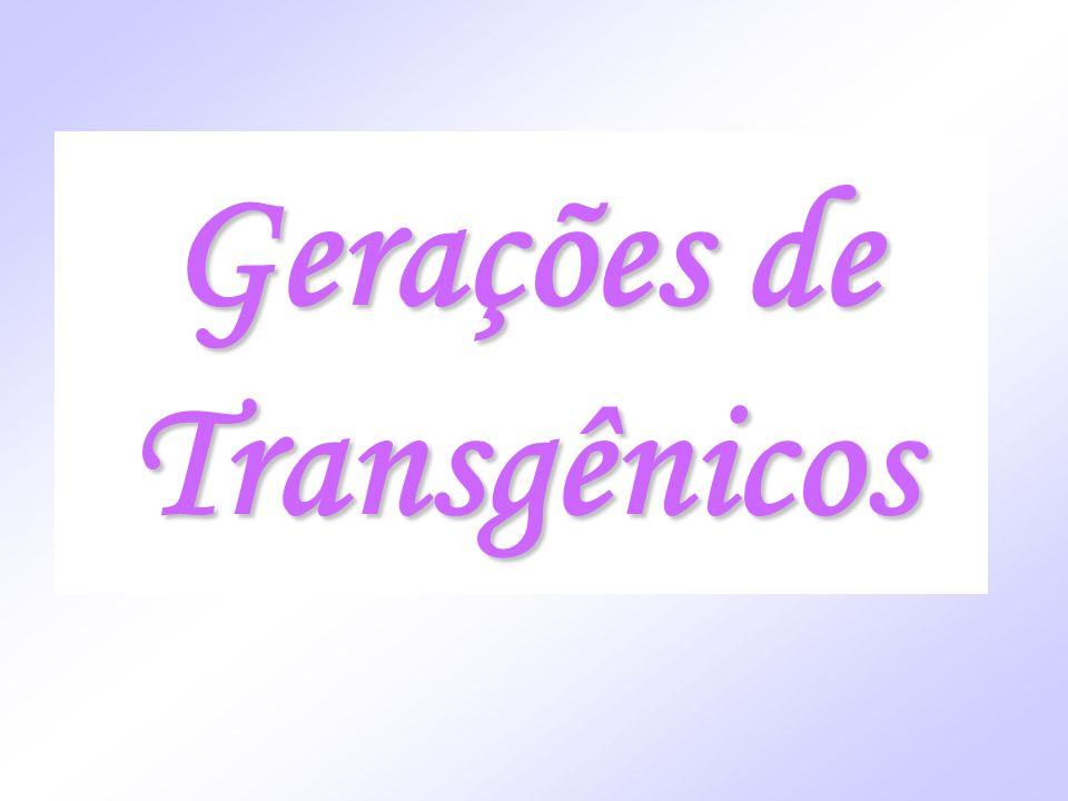 Gerações de Transgênicos