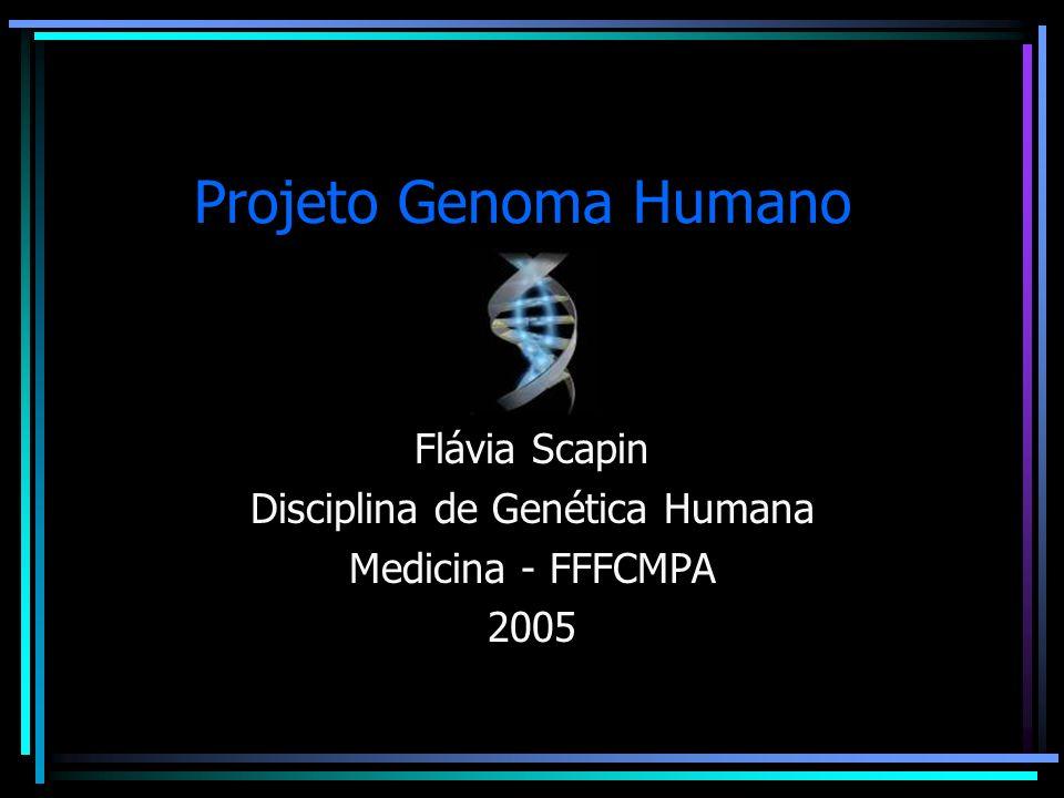 Flávia Scapin Disciplina de Genética Humana Medicina - FFFCMPA 2005