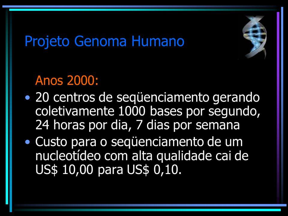 Projeto Genoma Humano Anos 2000: