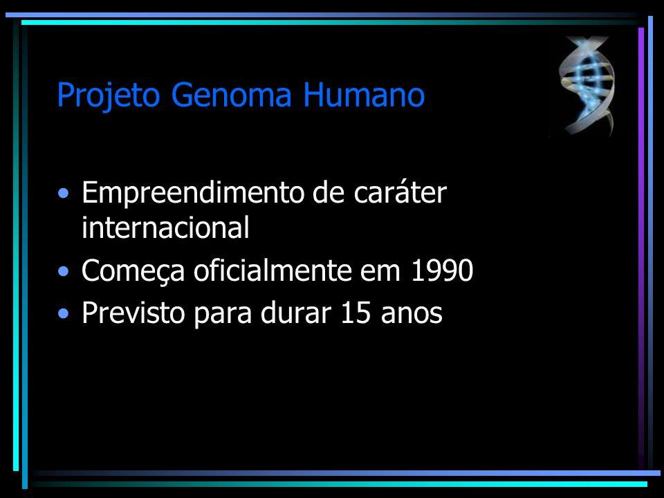 Projeto Genoma Humano Empreendimento de caráter internacional