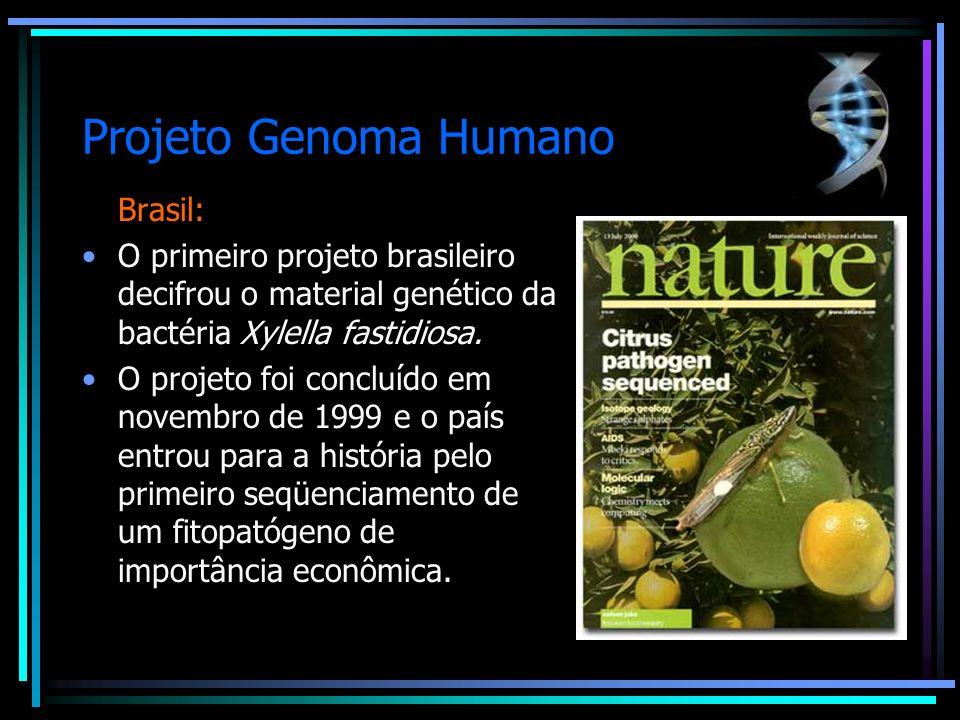 Projeto Genoma Humano Brasil: