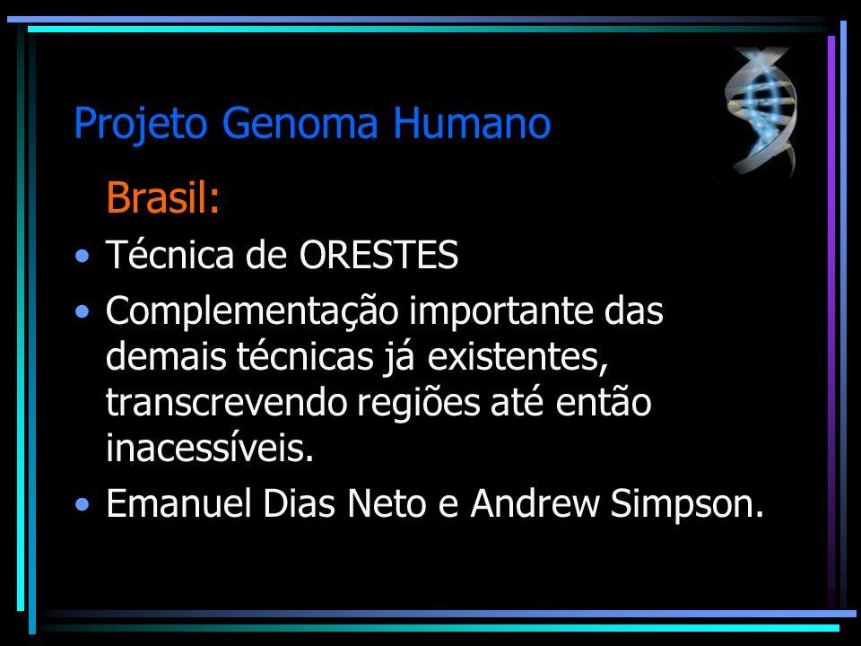 Projeto Genoma Humano Brasil: Técnica de ORESTES