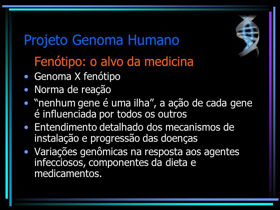 Projeto Genoma Humano Fenótipo: o alvo da medicina Genoma X fenótipo